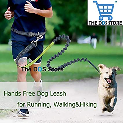 8c5d0f8e1b6 Buy The DDS Store Hands Free Dog Leash for Running, Walking, Hiking ...