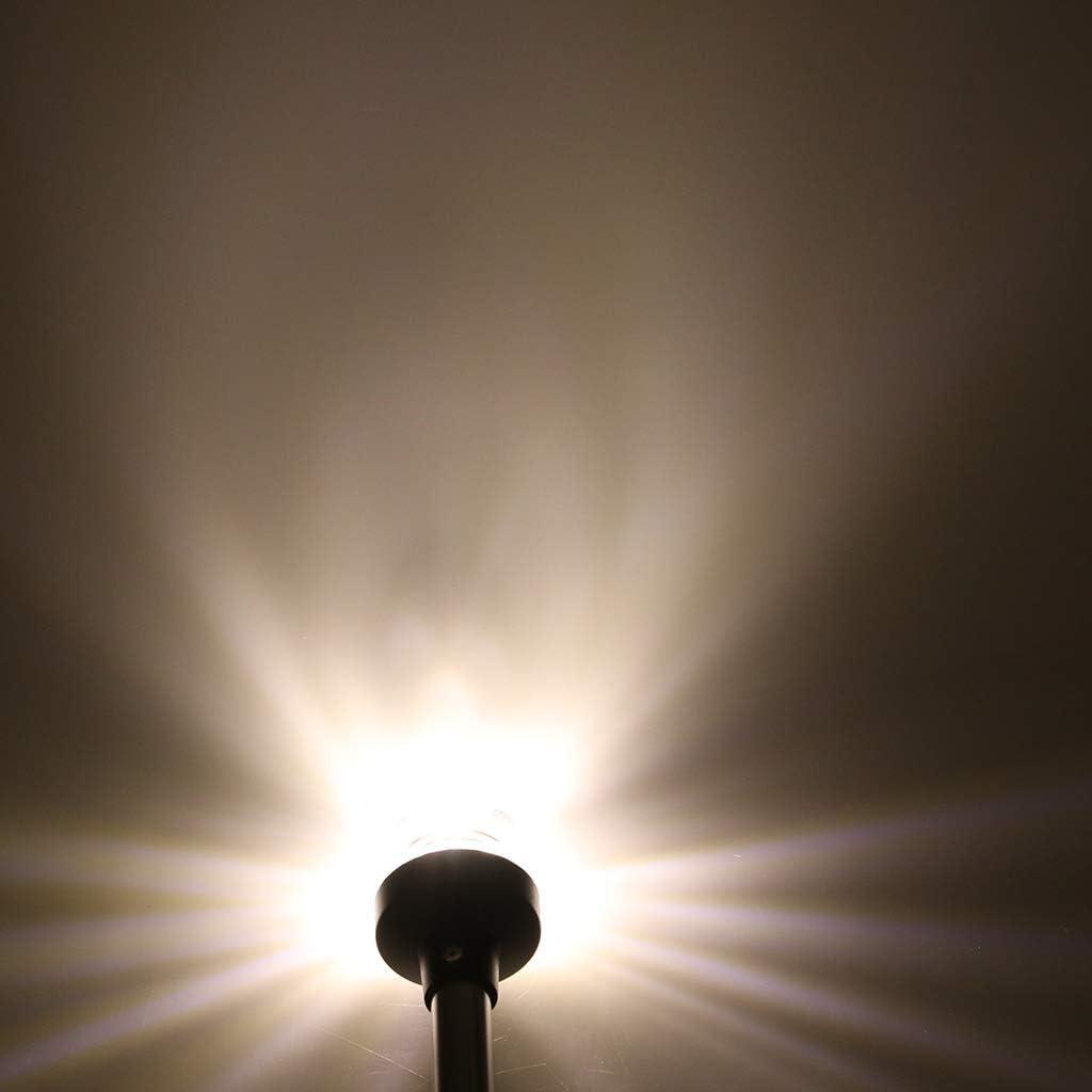 Sharplace Pontone LED Luce Palo Di Navigazione Ancora 360 Gradi Tuttintorno Barca Marina 250mm