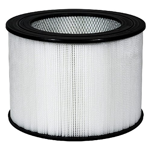 Nispira Replacement True HEPA Air Filter Compatible Honeywell 24000, 1 Filter by Nispira