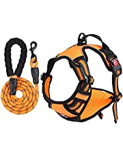 No Pull Dog Harness with 2 Leash Clips, Adjustable Reflective Dog Vest Harness, Easy Control Dog Harness with 5 Ft Heave Duty Leash