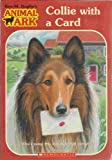 Collie with a Card, Ben M. Baglio, 0439687608
