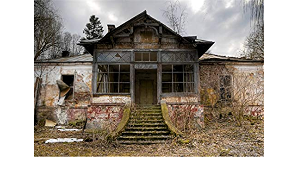 10x6.5ft Background Abandoned House Photography Backdrop Photo Video Props DSFU047