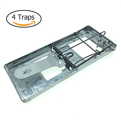 Trapro Metal Rat Trap Snap Trap for Rats and Other Large Rodents (Pack of 4) - Large Rat