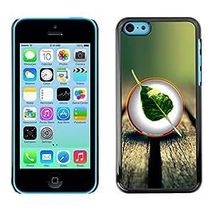 Cubierta de la caja de protección la piel dura para el Apple iPhone 5C - Cool Nature Wood Leaf Tree