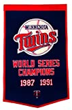 Minnesota Twins Official MLB 24 inch x 36 inch Dynasty Banner Flag by Winning Streak