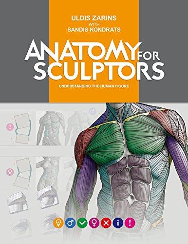Anatomy For Sculptors日本語版