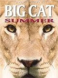 Big Cat Summer, Adam Hibbert and Dougal Dixon, 1577688791