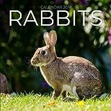 Rabbits Calendar 2018: Rabbit Photography, 8.5 x 8.5, 12 Months Mini Wall Calendar, (Office Gift Idea) (Animal Calendars)