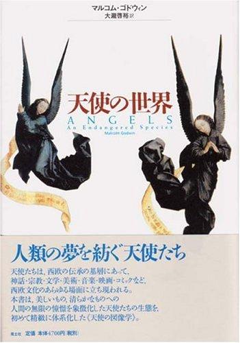 天使の世界