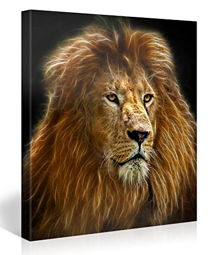 Large Canvas Print Wall Art – RADIANT LION – 30x30 Inch Animal Canvas Picture Stretched On A Wooden Frame – Giclee Canvas Printing – Hanging Wall Deco Picture / e4165