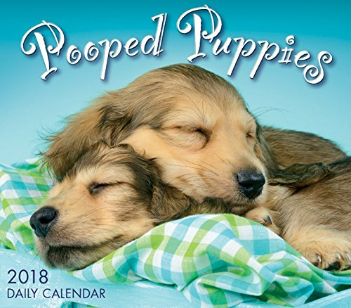 Pooped Puppies 2018 Boxed/Daily Calendar (CB0258)