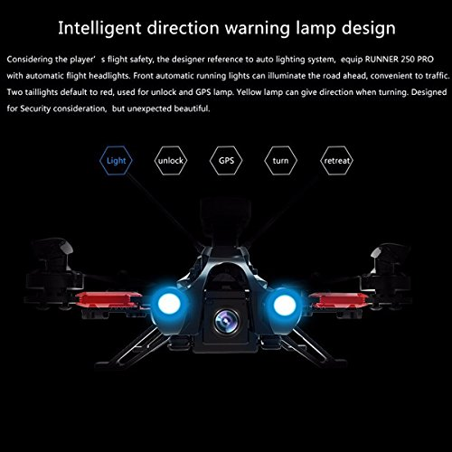 Walkera Runner 250 PRO Quadcopter with Camera 800TVL/OSD/GPS/5.8G Display/DEVO 7 RTF Transmtter