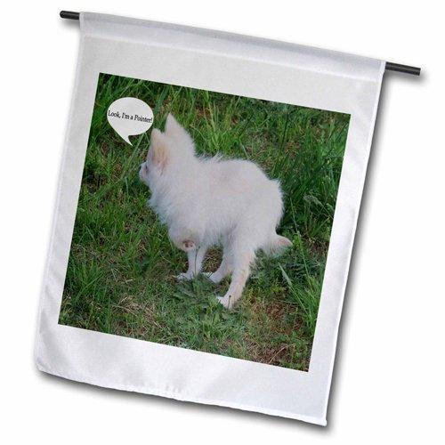 "3dRose fl_15786_2 ""White Pomeranian Puppy Look I'M A Poin..."