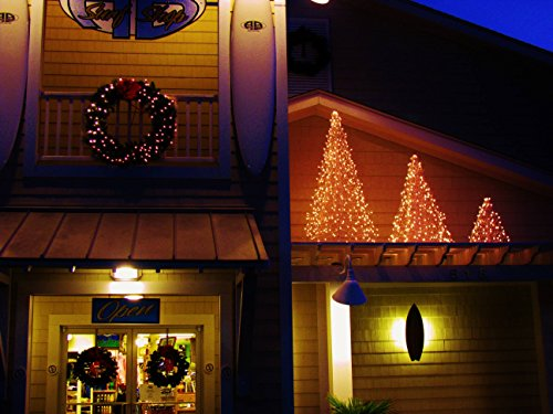 5 ft. Indoor/Outdoor Pre-Lit LED Artificial Christmas Tree with Green Frame and 280 Multi-Color Lights by Crab Pot Trees (Image #3)