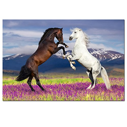 Visual Art Decor Animals Horse on Grassland Nature Landscape Picture Painting Prints Living Room Wall Decor Art Framed and Ready to Hang Artwork Home Wall Decoration (36