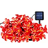 Outdoor Solar String Lights, Ecandy 21ft 50 Led Water-proof Blossom Flower Fairy Light with Light Sensor for Garden Patio Wedding Party Bedroom Christmas Walkway Decoration (Red)
