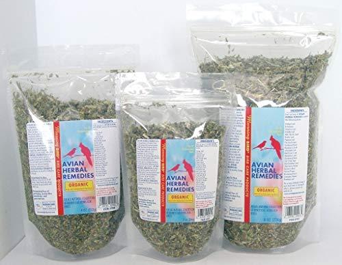 Healthy Bird 's orgánico zacate Ensalada: Amazon.com ...