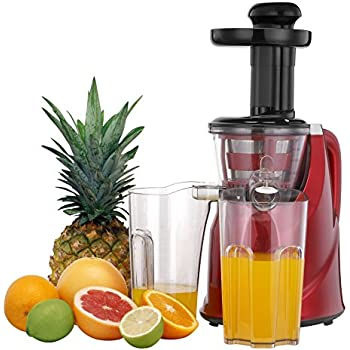 Pomegranate Juice Slow Juicer : Amazon.com: Hurom HU-100 Masticating Slow Juicer, White: Electric Masticating Juicers: Kitchen ...
