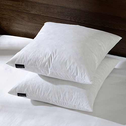 With mk 26quotx26quot euro pillow insert 95 feather 5 down for Best euro pillow inserts