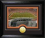 Highland Mint NFL Cincinnati Bengals Paul Brown Stadium Desktop Photomint