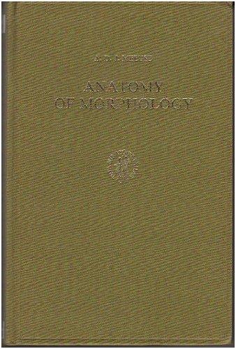 Anatomy Of Morphology
