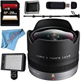 Panasonic Lumix G Fisheye 8mm f/3.5 Lens + 256GB SDXC Card + Deluxe 70 Monopod + Professional 160 LED Video Light Studio Series + Memory Card Wallet + Card Reader + Fibercloth Bundle