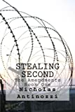 img - for Stealing Second (The Amendments) (Volume 1) book / textbook / text book
