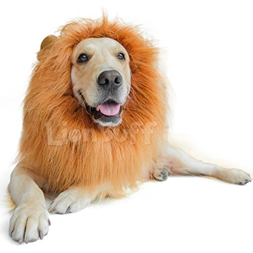 [LionBuff Lion Mane Costume for Dog, LionBuff Dog Wig for Holloween Christmas Party, Purchase This Item Get Your Little] (Dog Lion Costume Large)