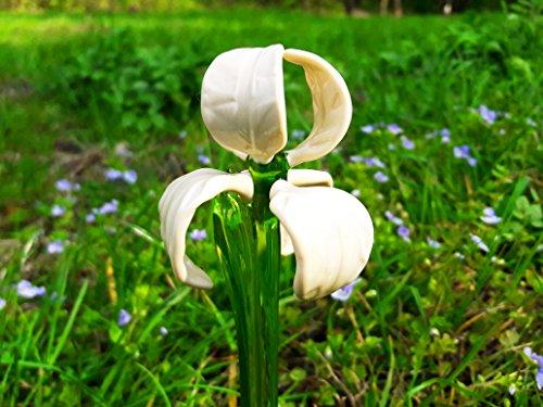 White Glass Iris Flowers Figurine Blown Flower Sculpture Art Glass Flower Murano Long Stem Flower Garden Iris Ornaments (Small Iris Garden Sculpture)