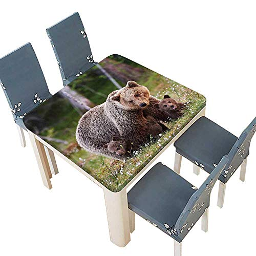 PINAFORE Spring & Summer Outdoor Tablecloth, Bear Protecting Her Cubs in Finnish Forest Nordic Picture Fern Green Cocoa Multicolor 41 x 41 INCH (Elastic Edge)