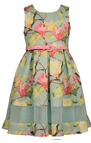 Bonnie Jean Big Girls Mint Floral Belted Dress (Multicolor, 16)
