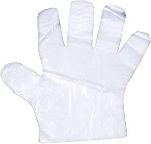 RAYNAG 200 Pieces Disposable Clear Plastic Gloves, Poly Gloves for Preparing Food, Handling Raw Meat, Kitchen/Bathroom Disposable Gloves