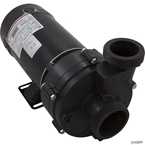 Horizon Spa & Pool Parts Pump, BWG Vico Ultimax, 1.5hp Century, Conv, 1-Spd, 48fr, 2