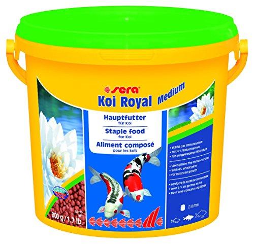 Sera mangime per pesci koi royal medium gr 800 for Accessori per laghetti