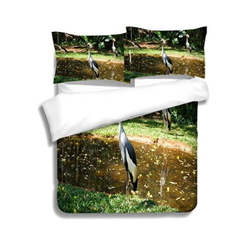 MTSJTliangwan Family Bed Grey Crowned Crane Birds 3 Piece Bedding Set with Pillow Shams, Queen/Full, Dark Orange White Teal Coral