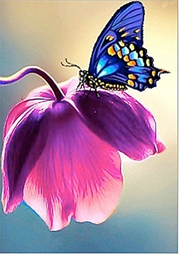 (YEESAM Art New 5D Diamond Painting Kit - Butterfly - DIY Crystals Diamond Rhinestone Painting Pasted Paint by Number Kits Cross Stitch Embroidery (Pink))