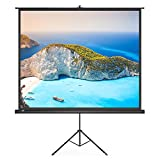 PC Hardware : Projector Screen, TaoTronics Indoor and Outdoor Movie Screen 100 Inch Diagonal 4:3 with a Premium PVC Matte Design (Wrinkle-Free, Easy to Clean, 1.1 Gain, 160 Degree Viewing Angle)