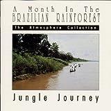 A Month in the Brazilian Rainforest: Jungle Journey