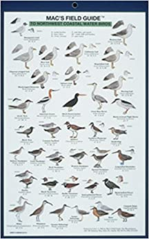 Macs Field Guide To Northwest Coastal Water Birds Macs Guides