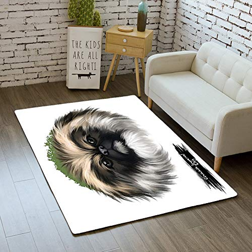 - iBathRugs Door Mat Indoor Area Rugs Living Room Carpets Home Decor Rug Bedroom Floor Mats,Chinese Imperial Dog Breed Isolated