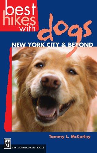 new york dogs - 7
