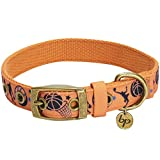 Blueberry Pet 5 Patterns Durable Sports Fan Basketball Canvas Dog Collar with Metal Buckle in Passion Orange - Neck 13-16.5
