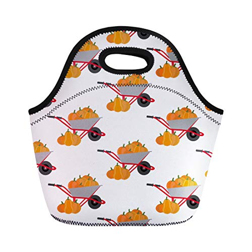 - Semtomn Lunch Tote Bag Orange Fall Pumpkin Harvest Pattern Autumn Food Gourd Halloween Reusable Neoprene Insulated Thermal Outdoor Picnic Lunchbox for Men Women
