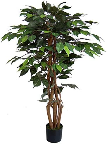 Seidenblumen Ro/ß Ficus Excotica 120cm gr/ün DA Kunstbaum Kunstpflanzen k/ünstlicher Baum Dekobaum Birkenfeige