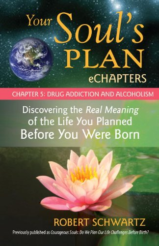 Your Soul's Plan eChapters - Chapter 5: Drug Addiction and Alcoholism: Discovering the Real Meaning of the Life You Planned Before You Were Born (Echapter Case)