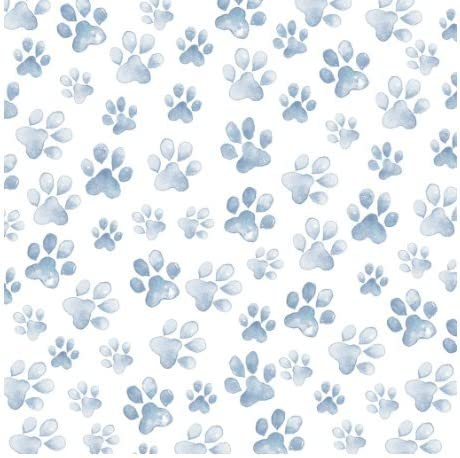 Dog Paw Watercolor Paper 12x12-4 Sheets