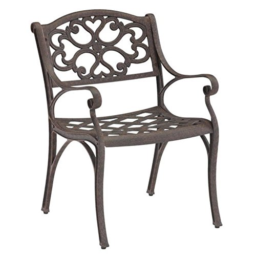 Home Style 5555-802 Biscayne Dining Arm Chairs, Rust Bronze Finish, Set of 2 For Sale