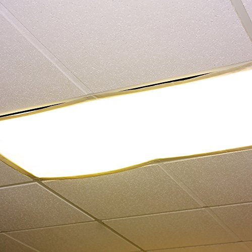 Fluorescent Light Anxiety: Educational Insights Fluorescent Light Filters (Whisper