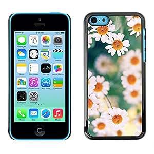 """For Apple iPhone 5C Case , Margaritas Primavera Verano Blanco Amarillo"""" - Diseño Patrón Teléfono Caso Cubierta Case Bumper Duro Protección Case Cover Funda"""