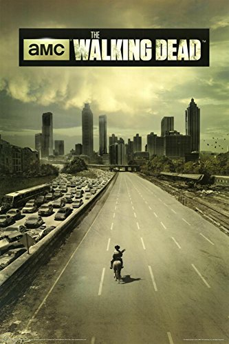 Walking Dead Season Television Poster